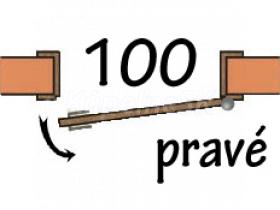 100 Pravé